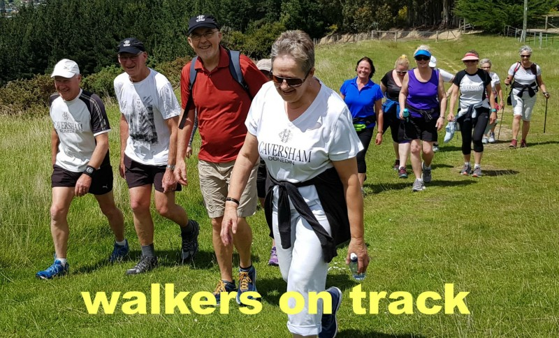 Walkers On Track