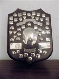 Barlett Shield